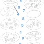esercizi-matematica-scuola-elementare-numeri-0-9