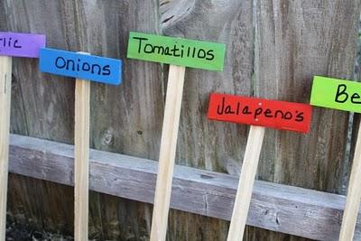 giardinaggio-garden-markers-legni_-colorati