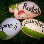 giardinaggio-garden-markers-sassi_