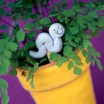 giardinaggio-garden-markers-serpente