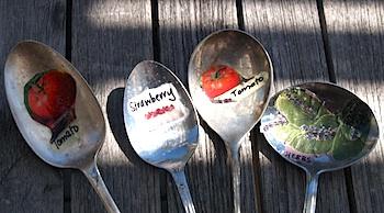 giardinaggio.garden.markers-cucchiai