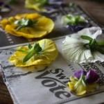 pressa-per-fiori-seccare