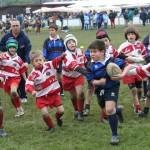 bimbi-rugby
