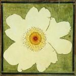 mamme-creative-fiori