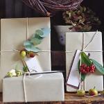 regali-di-natale-idee-pacchetto-rami