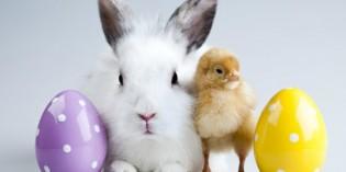 Pasqua: lavoretti, ricette, disegni e tradizioni