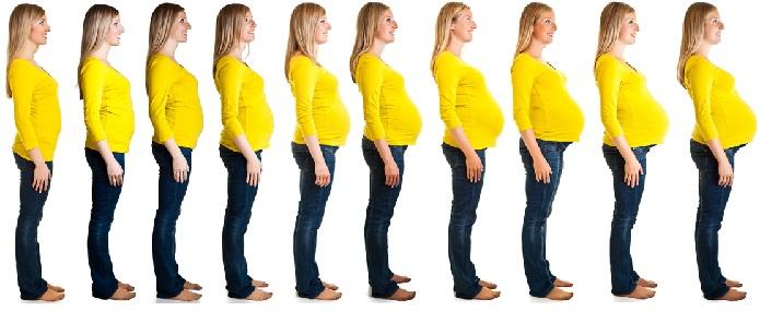 Le settimane di gravidanza - Sensazione di bagnato prima del ciclo o gravidanza ...