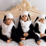 costumi-carnevale-pecore