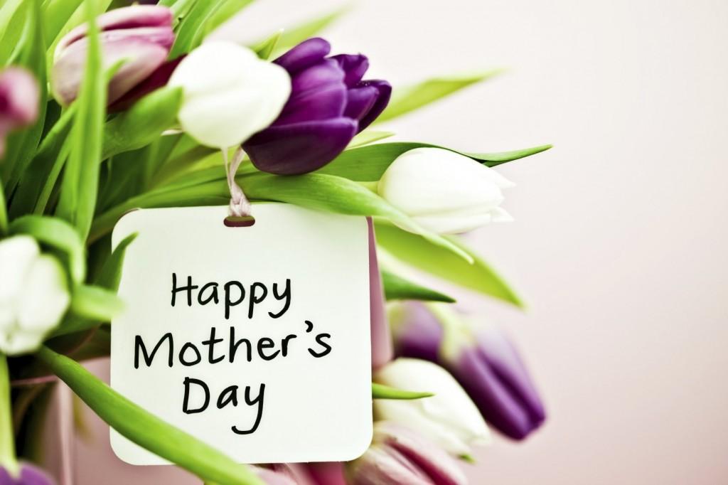 tulipani festa della mamma
