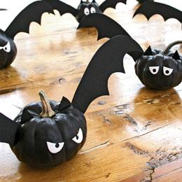 zucche-pipistrelli