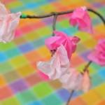 lavoretti-primavera-ramo