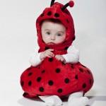 costume di carnevale per bebè coccinella