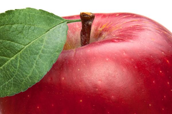 Picciolo e foglia di una mela