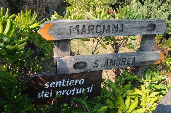 Vacanze all'Elba - Ceriegi