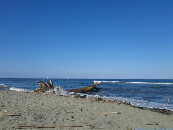 Al mare in Corsica - Trippando