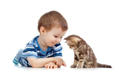 Rispetto animali domestici bambini