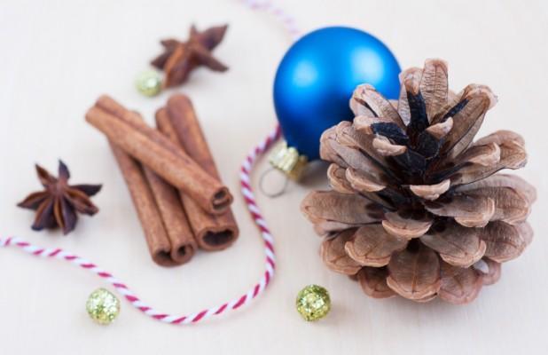lavoretti di Natale con le pigne