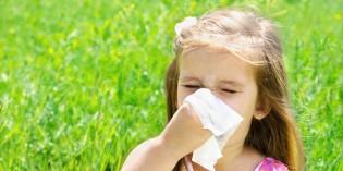 Come proteggere i bambini dalle allergie respiratorie grazie ai farmaci omeopatici