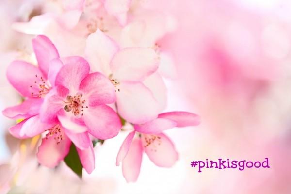 tumore al seno e ricerca #pinkisgood lines