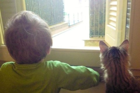 purina-petcare-quandofuoripiove-genitori-crescono