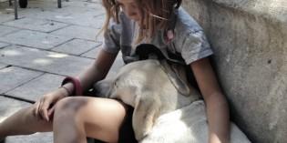 Vivere con un animale: come responsabilizzare i bambini – A scuola di Petcare Purina