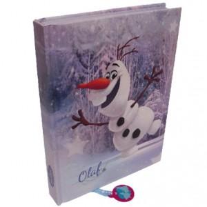 Accessori scuola di Frozen_Diario Frozen