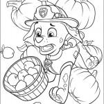 Disegni della Paw Patrol da stampare gratis_Marshall con cesta di mele