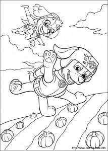 Disegni della Paw Patrol da stampare gratis_Skye e Zuma