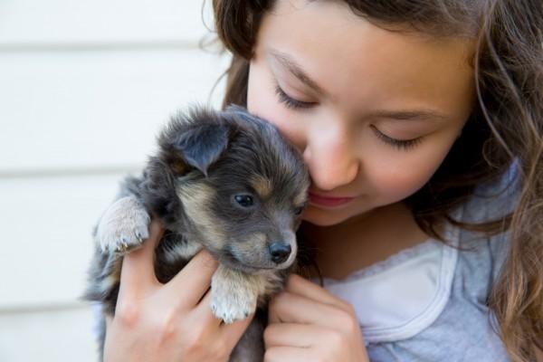 bambini e animali da compagnia