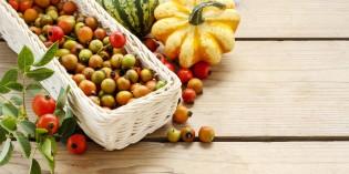Alimentazione bambini: Calendario stagionale di frutta e verdura