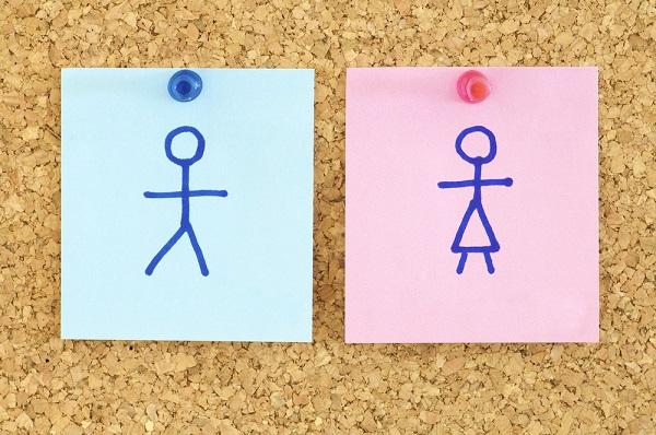 teoria del gender