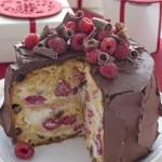Panettoni decorati più belli del web_cioccolato e lamponi