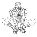 disegni di carnevale da colorare_spiderman