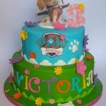 Torte di compleanno della Paw Patrol _Skye