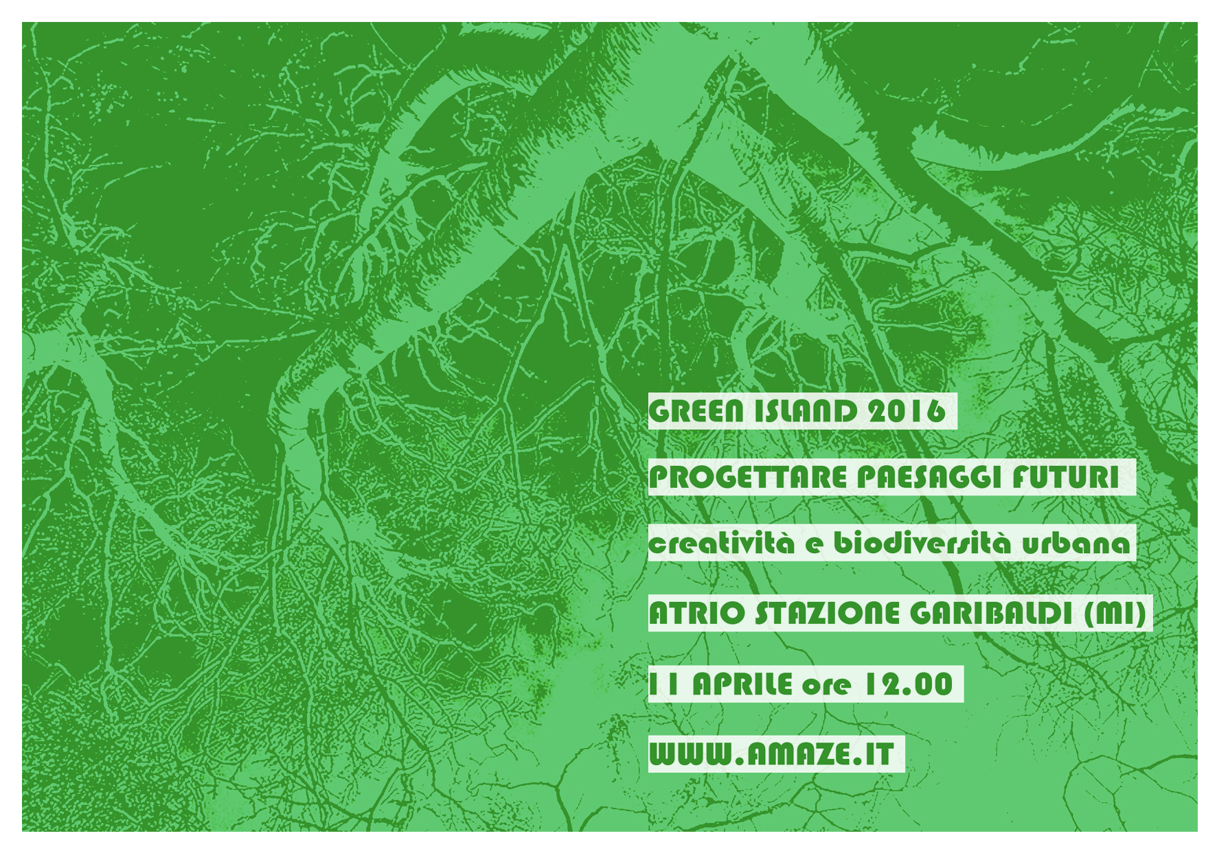 Green Island_web