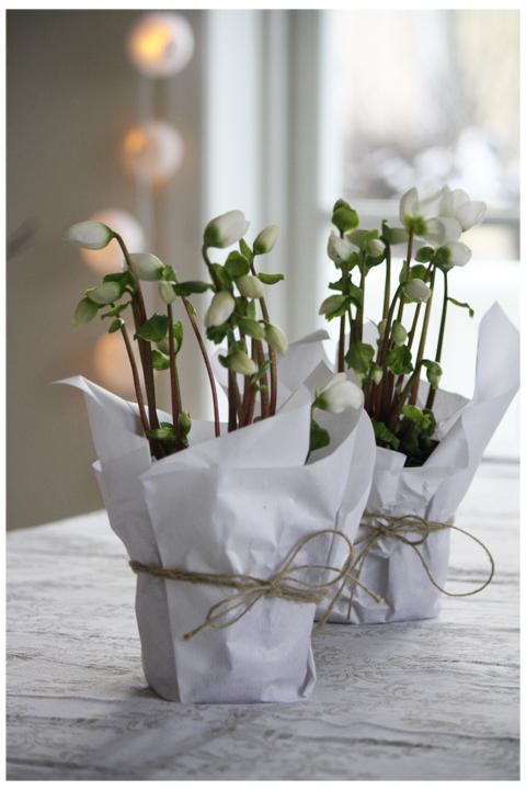 Favori Addobbi con fiori per Prima Comunione, feste e cerimonie  JB92