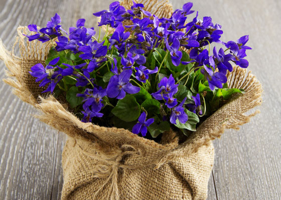 addobbi con fiori prima comunione