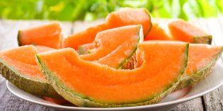 Alimentazione bambini: il melone quando si può dare?