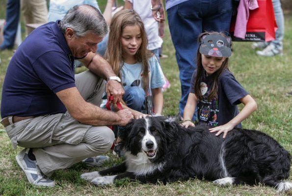 animali domestici nonni nipoti purina a scuola di petcare