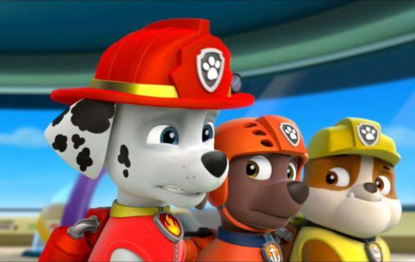 Paw Patrol_Primo piano cuccioli Marshall-Zuma- Rubble