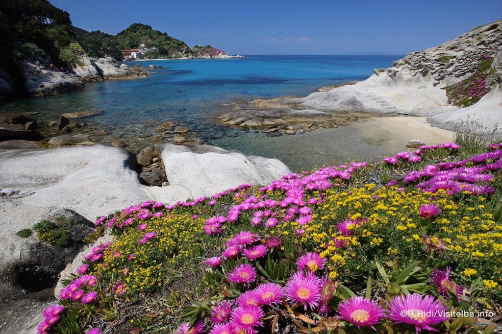 spiaggia di cotoncello elba vacanza in anticipo