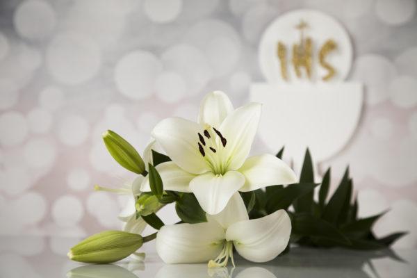 immagine per inviti di prima comunione
