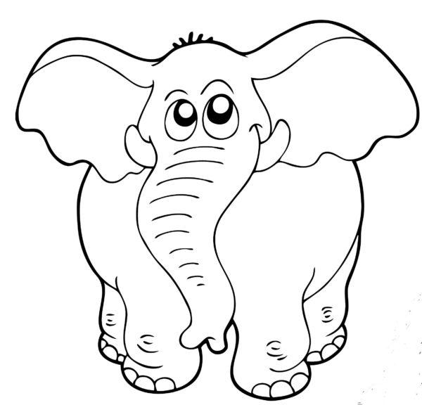 disegni di animali da stampare: elefante