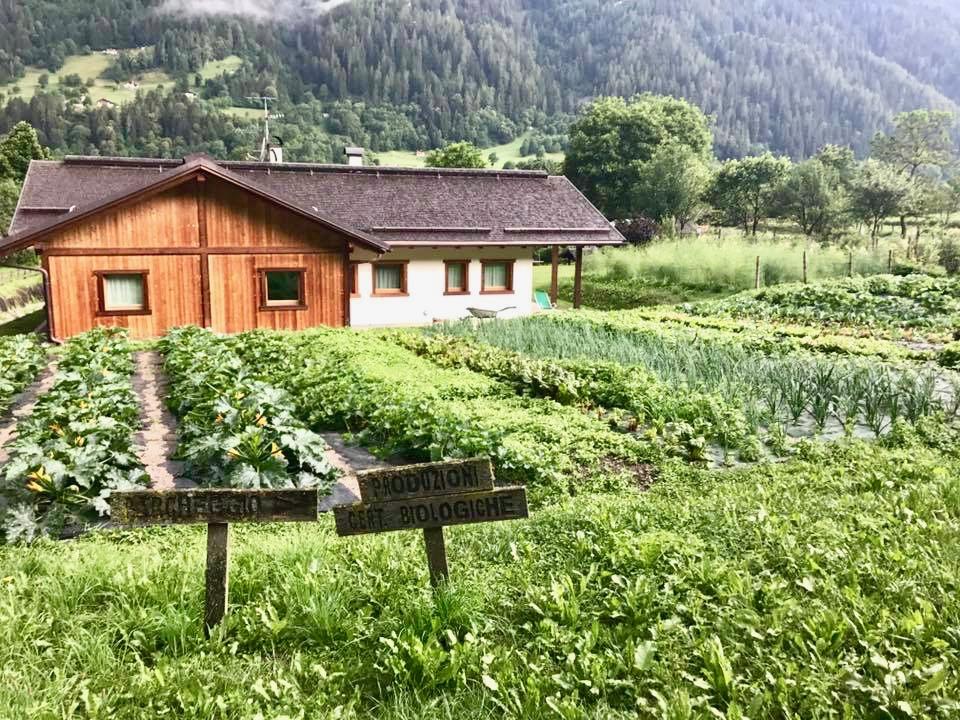 vacanza in Trentino con i bambini_ Agritur Casa al Campo
