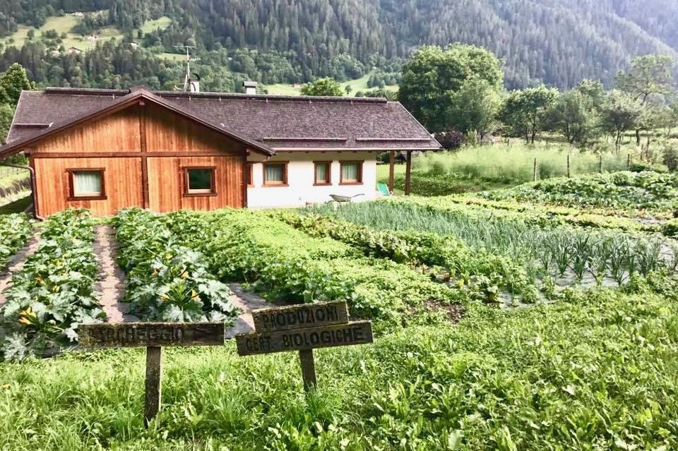 vacanza in Trentino con i bambini_ Agritur Casa al Campo_cop