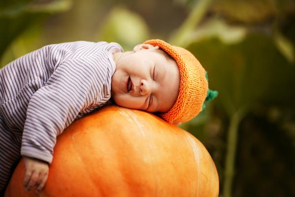 Svezzamento e zucca 5 ricette facili per neonati