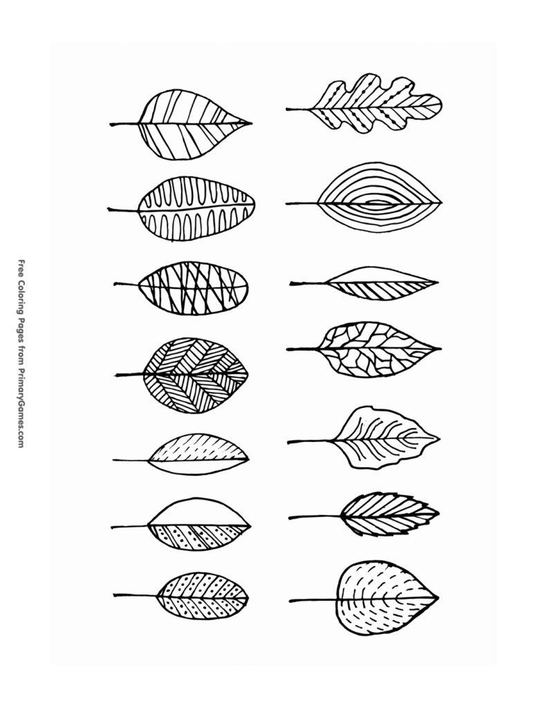 Disegni dell'autunno da colorare e stampare gratis _ foglie
