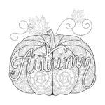 Disegni dell'autunno da colorare e stampare gratis _ zucca sfumata