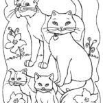 disegni di gatti da colorare e stampare gratis _ famiglia gatti