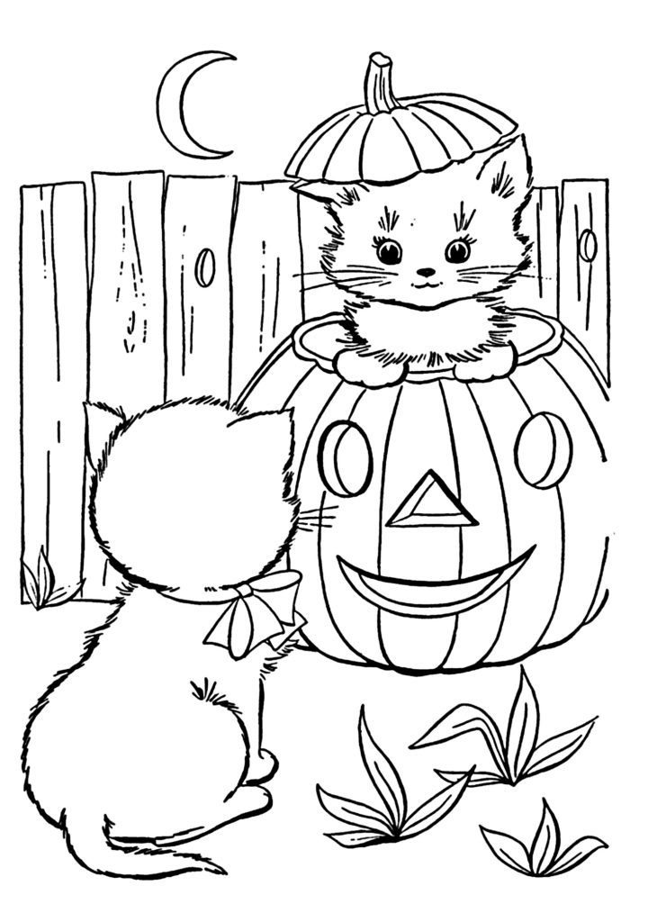 disegni di gatti da colorare e stampare gratis _ gattini Halloween